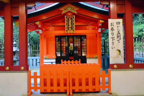 九頭竜神社・新宮
