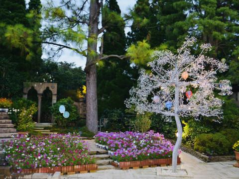 箱根ガラスの森美術館 ガーデン 庭園 ガラスの木
