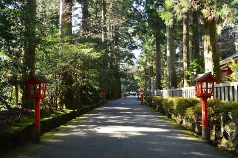 箱根神社境内