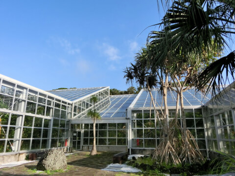 八丈植物公園