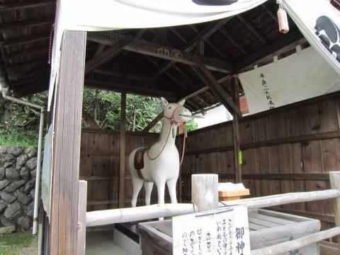 針綱神社の馬