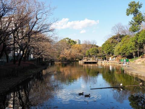 ひょうたん池 平和の森公園