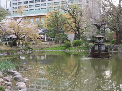 雲形池 桜
