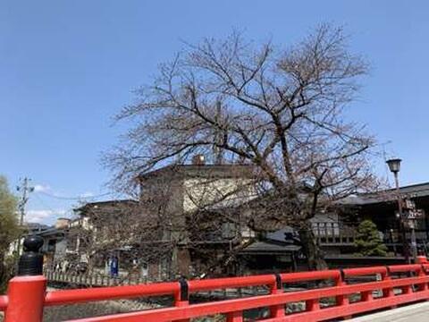 高山市街地の景色
