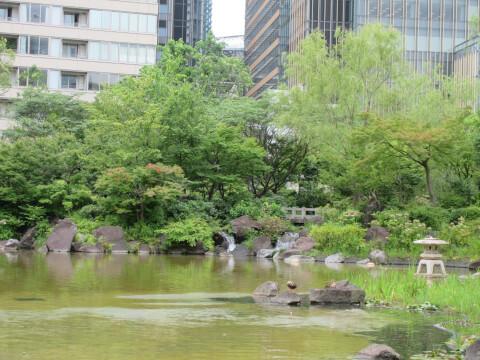 檜町公園 庭園