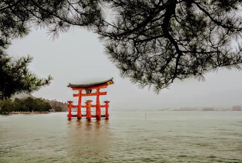 厳島神社 大鳥居 宮島 満潮