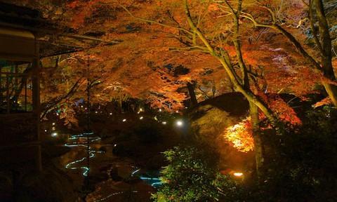 京都:宝厳院2