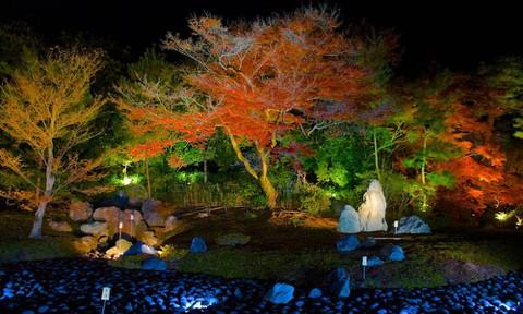 京都:宝厳院1