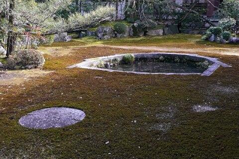 三つ巴の庭