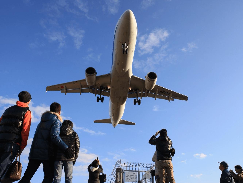 お得に旅行したい方必見!格安航空券予約サイト41選 | tabi channel