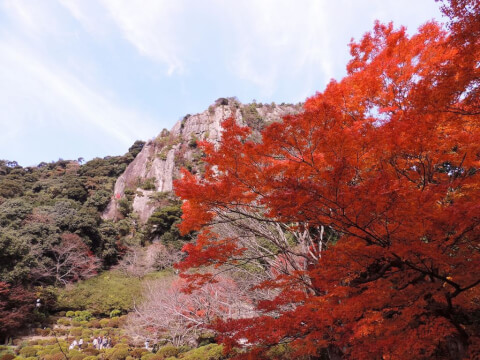 御船山楽園 紅葉