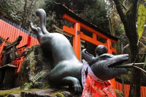 伏見稲荷狐2