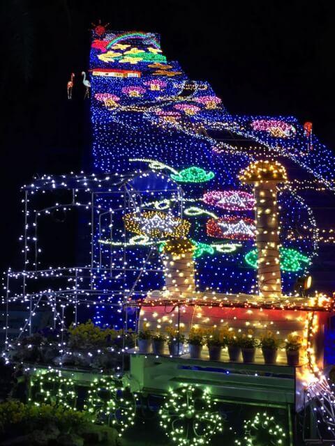 illuminationflowerpark
