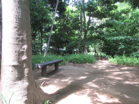 品川高輪の森
