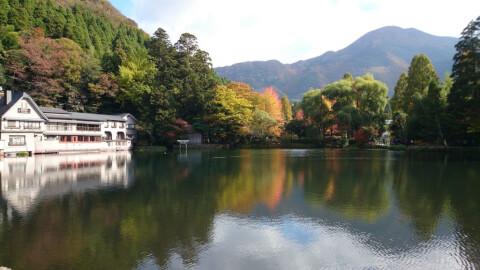 金鱗湖 紅葉