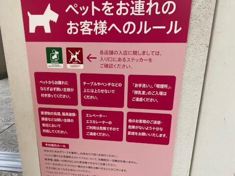 三井アウトレットパーク_観光