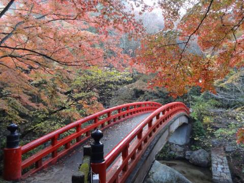 岩谷堂公園 橋