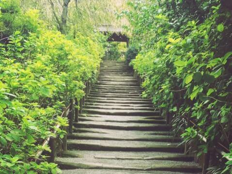鎌倉_観光_旅_名所_神社_食べ歩き_景色
