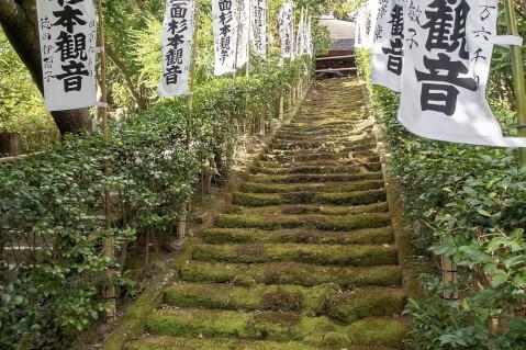 杉本寺_鎌倉_観光_旅_名所_神社_食べ歩き_景色