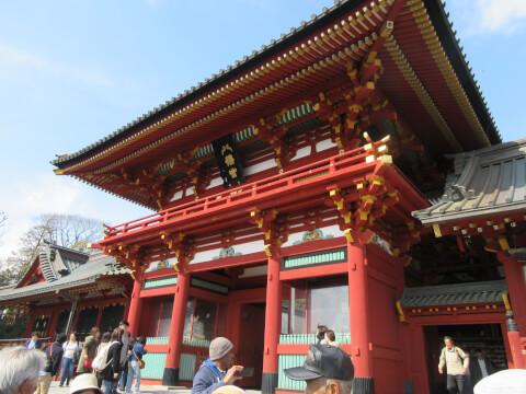 鶴岡八幡宮 本殿
