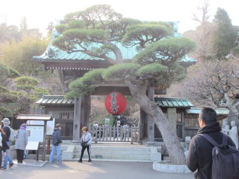 長谷寺 入口