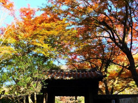 瑞泉寺 観光