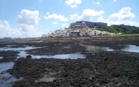 senagajima