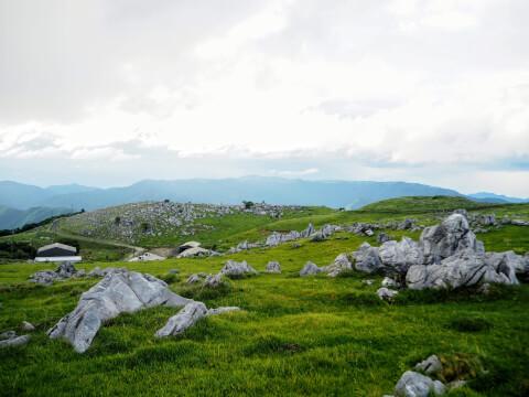 五段高原 四国カルスト 石灰岩