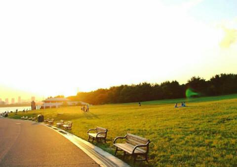 葛西臨海公園 夕日