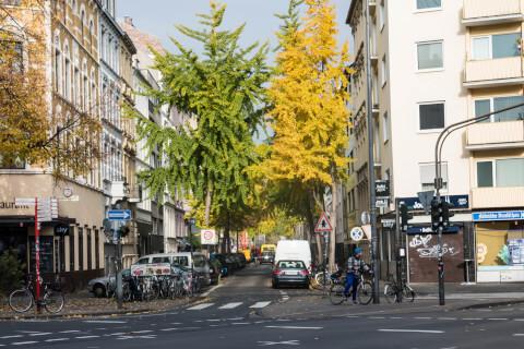 ベルギー地区