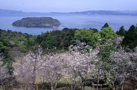 鹿児島観光魚見岳