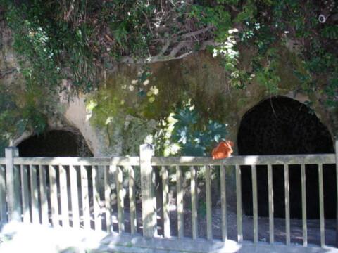鹿児島観光西郷洞窟