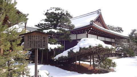 金閣寺 陸舟の松