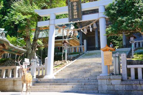 宮城観光 金華山 黄金山神社