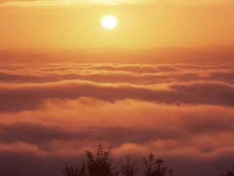 霧の海展望台