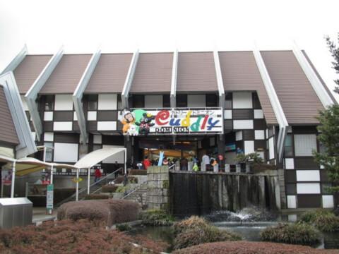 熊本観光 カドリードミニオン