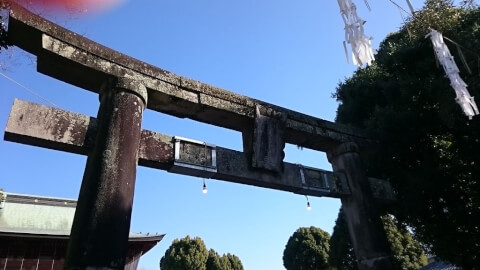 熊本観光 藤崎八旛宮