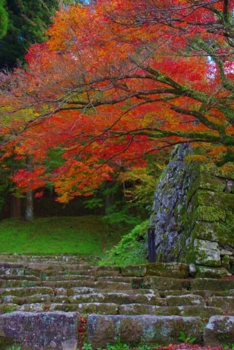 熊本観光 人吉城跡