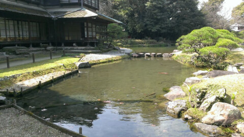 熊本観光 松浜軒