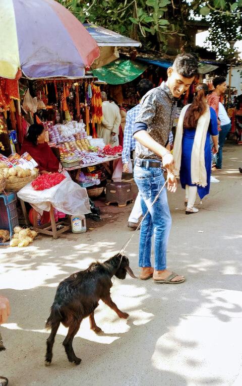 カーリー女神寺院 コルカタ インド