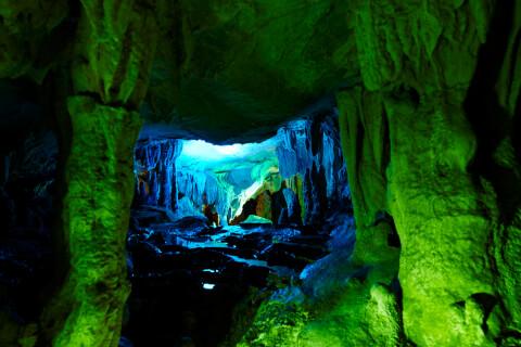 高知 観光 旅行 龍河洞 おすすめ 家族 名所