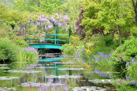 高知 観光 モネの庭 おすすめ 観光 旅行 スポット