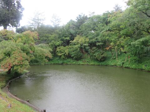 夏 高台寺