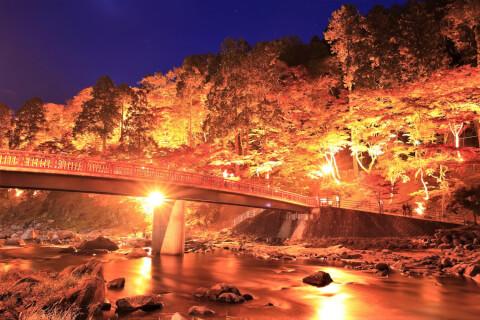 日本 絶景 愛知 香嵐渓 紅葉 ライトアップ