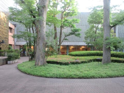 国立西洋美術館 庭