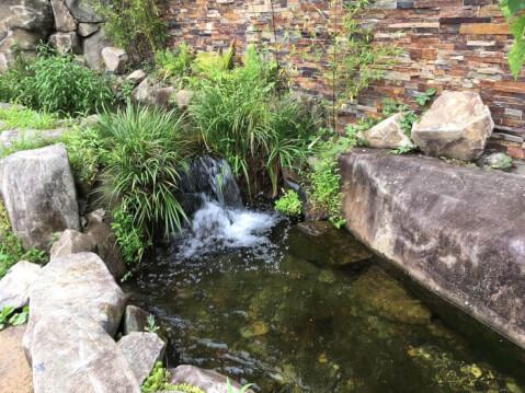 京都水族館 中庭