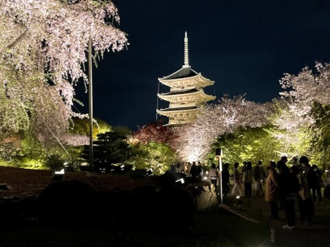 東寺の五重の塔