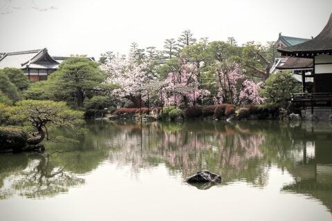 神苑内の池