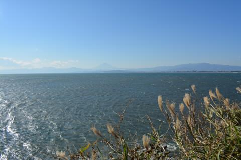 江ノ島の海