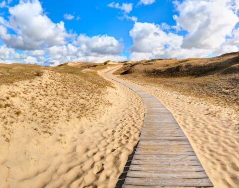 クルシュー砂丘